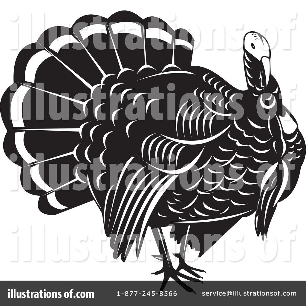 turkey bird clipart 1128024 illustration by patrimonio
