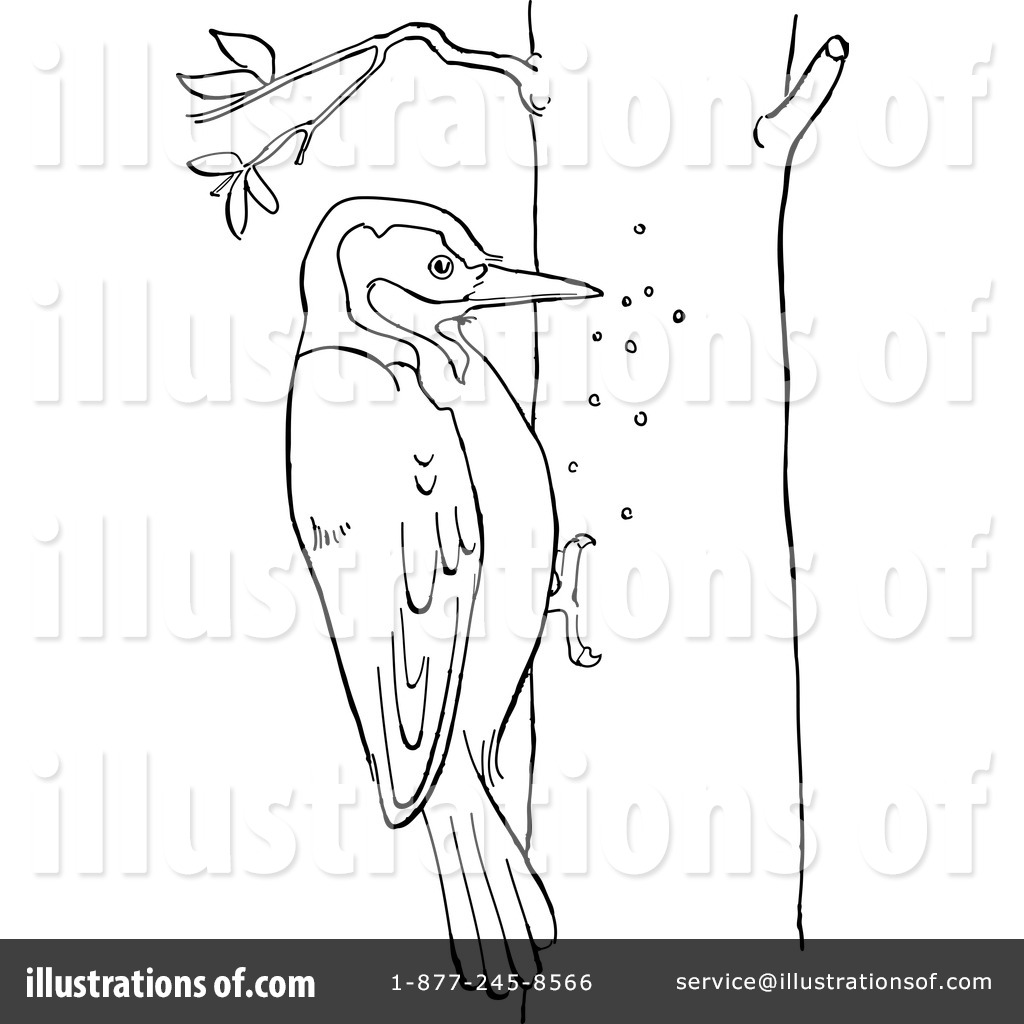 Woodpecker Clipart 1127758 Illustration