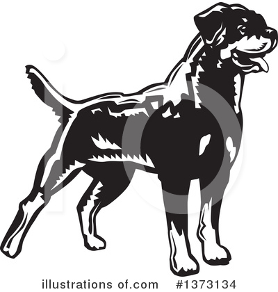 Rottweiler Clipart #1373134 by David Rey