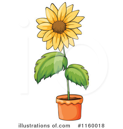 Sunflower Clipart #1160018 by Graphics RF