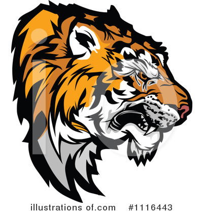 Tiger Clipart #1116443 by Chromaco