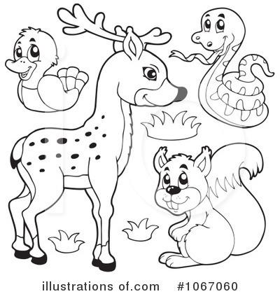 Wildlife Clipart #1067060 - Illustration by visekart
