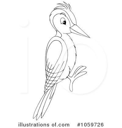 Woodpecker Clipart 1059726 Illustration